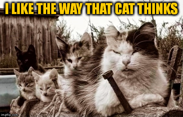I LIKE THE WAY THAT CAT THINKS | made w/ Imgflip meme maker