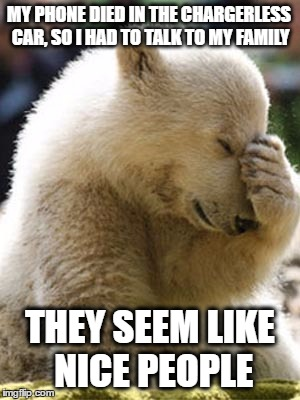 Facepalm Bear |  MY PHONE DIED IN THE CHARGERLESS CAR, SO I HAD TO TALK TO MY FAMILY; THEY SEEM LIKE NICE PEOPLE | image tagged in memes,facepalm bear | made w/ Imgflip meme maker