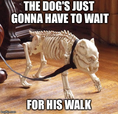 THE DOG'S JUST GONNA HAVE TO WAIT FOR HIS WALK | made w/ Imgflip meme maker