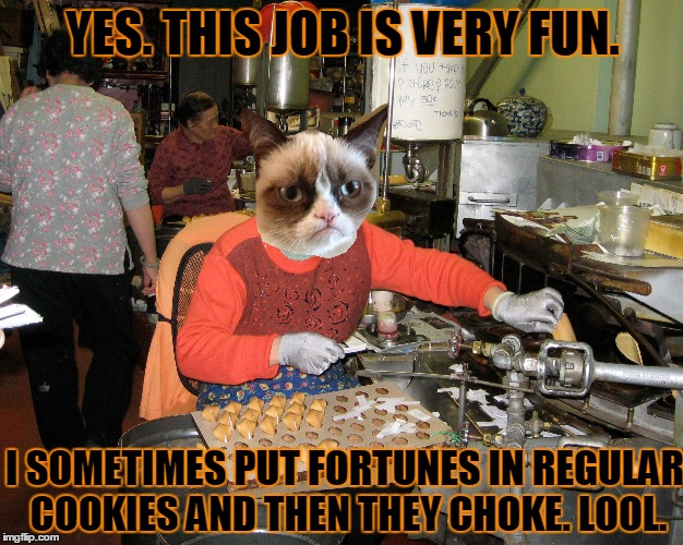 YES. THIS JOB IS VERY FUN. I SOMETIMES PUT FORTUNES IN REGULAR COOKIES AND THEN THEY CHOKE. LOOL. | made w/ Imgflip meme maker
