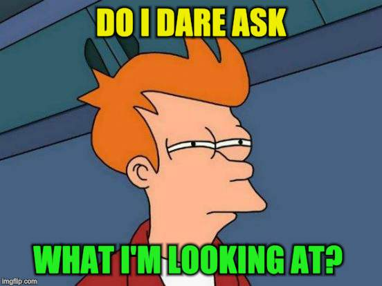 Futurama Fry Meme | DO I DARE ASK WHAT I'M LOOKING AT? | image tagged in memes,futurama fry | made w/ Imgflip meme maker