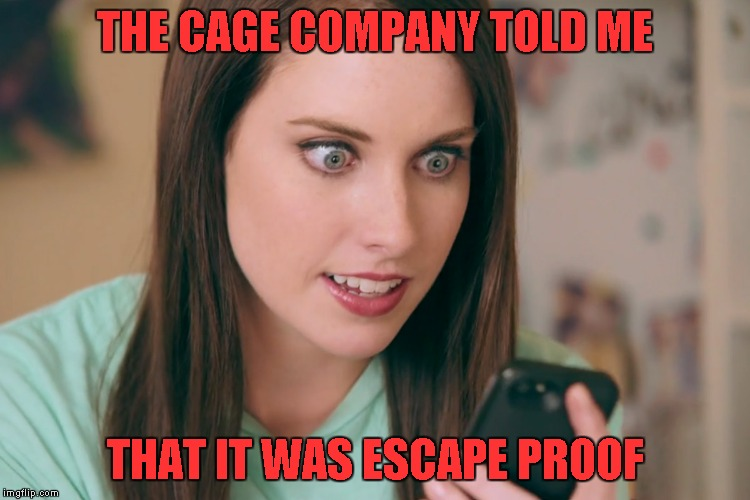 THE CAGE COMPANY TOLD ME THAT IT WAS ESCAPE PROOF | made w/ Imgflip meme maker