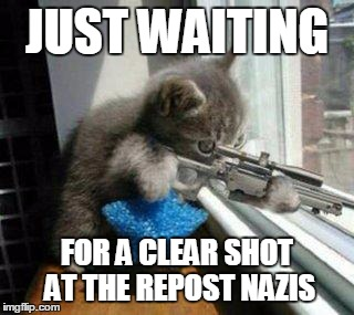 JUST WAITING FOR A CLEAR SHOT AT THE REPOST NAZIS | made w/ Imgflip meme maker