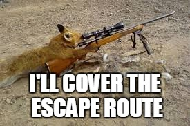 I'LL COVER THE ESCAPE ROUTE | made w/ Imgflip meme maker