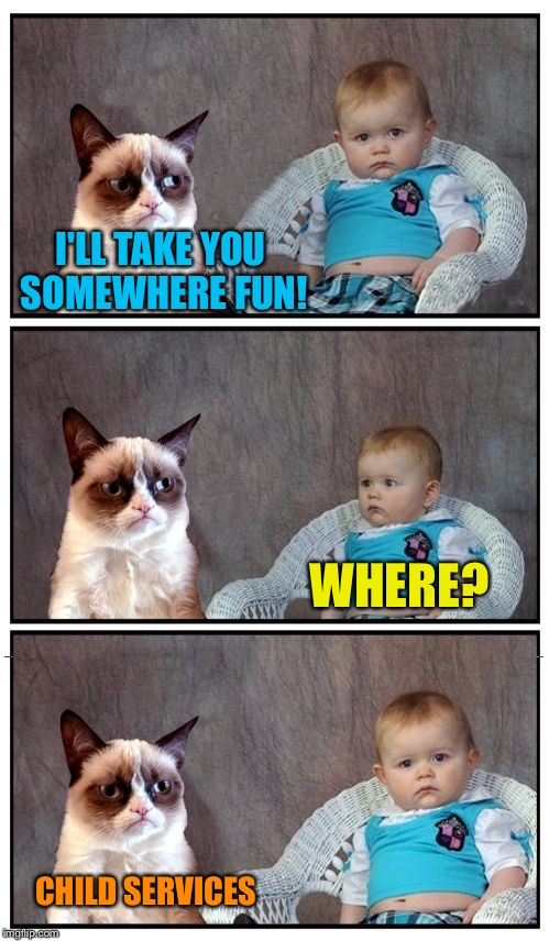 Dad Joke Cat | I'LL TAKE YOU SOMEWHERE FUN! WHERE? CHILD SERVICES | image tagged in dad joke cat,memes | made w/ Imgflip meme maker