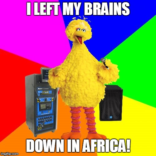 Wrong lyrics karaoke Big Bird sings a Toto classic | I LEFT MY BRAINS DOWN IN AFRICA! | image tagged in wrong lyrics karaoke big bird,funny memes,misheard,toto,classic rock | made w/ Imgflip meme maker