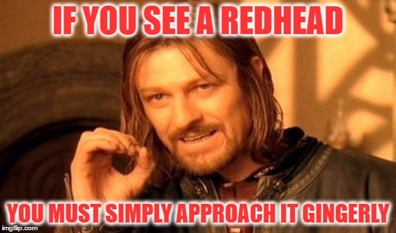 One Does Not Simply Meme | IF YOU SEE A REDHEAD YOU MUST SIMPLY APPROACH IT GINGERLY | image tagged in memes,one does not simply | made w/ Imgflip meme maker
