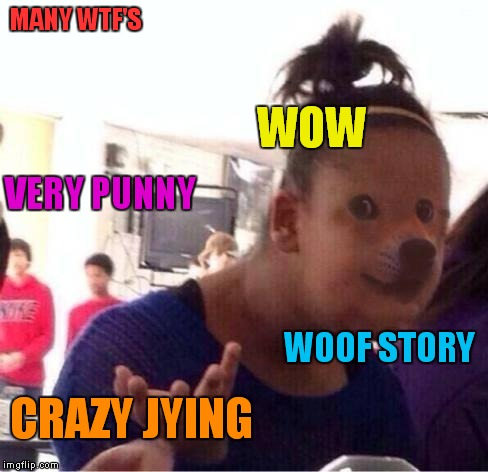 MANY WTF'S CRAZY JYING VERY PUNNY WOW WOOF STORY | made w/ Imgflip meme maker
