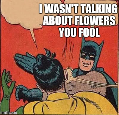 When you're talking about musical violas, but other people think you're talking about flowers | I WASN'T TALKING ABOUT FLOWERS YOU FOOL | image tagged in memes,batman slapping robin,flowers,viola,violas,music | made w/ Imgflip meme maker
