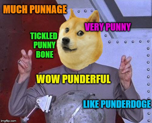 MUCH PUNNAGE VERY PUNNY TICKLED PUNNY BONE WOW PUNDERFUL LIKE PUNDERDOGE | made w/ Imgflip meme maker