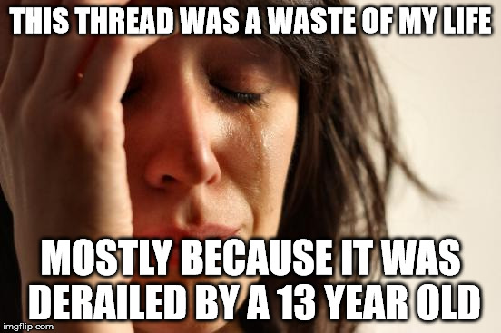 First World Problems Meme | THIS THREAD WAS A WASTE OF MY LIFE MOSTLY BECAUSE IT WAS DERAILED BY A 13 YEAR OLD | image tagged in memes,first world problems | made w/ Imgflip meme maker