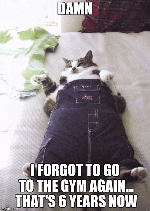 Fat Cat | DAMN I FORGOT TO GO TO THE GYM AGAIN... THAT'S 6 YEARS NOW | image tagged in memes,fat cat | made w/ Imgflip meme maker