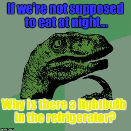 Questions People Who Are High, Ask: (Not To Mention The Lights In The Microwave, And Over The Stove)   ;) | If we're not supposed to eat at night... Why is there a lightbulb in the refrigerator? | image tagged in memes,philosoraptor | made w/ Imgflip meme maker