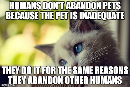 First World Problems Cat |  HUMANS DON'T ABANDON PETS BECAUSE THE PET IS INADEQUATE; THEY DO IT FOR THE SAME REASONS THEY ABANDON OTHER HUMANS | image tagged in memes,first world problems cat | made w/ Imgflip meme maker
