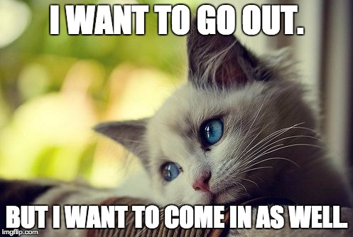 First World Problems Cat |  I WANT TO GO OUT. BUT I WANT TO COME IN AS WELL. | image tagged in memes,first world problems cat | made w/ Imgflip meme maker