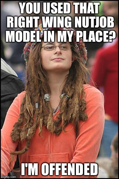 Libturd | YOU USED THAT RIGHT WING NUTJOB MODEL IN MY PLACE? I'M OFFENDED | image tagged in libturd | made w/ Imgflip meme maker
