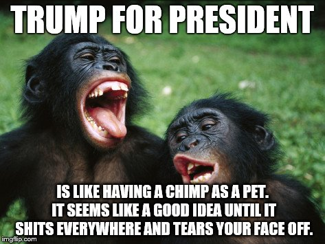 Bonobo Lyfe | TRUMP FOR PRESIDENT IS LIKE HAVING A CHIMP AS A PET. IT SEEMS LIKE A GOOD IDEA UNTIL IT SHITS EVERYWHERE AND TEARS YOUR FACE OFF. | image tagged in memes,bonobo lyfe | made w/ Imgflip meme maker