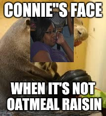169y87 otter imgflip,Connie Meme