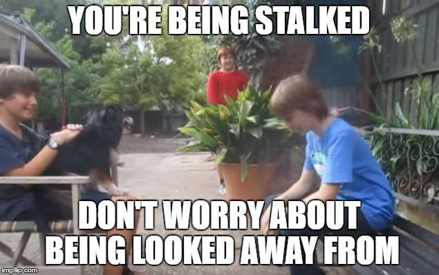 Skits, Bits and Nits | YOU'RE BEING STALKED DON'T WORRY ABOUT BEING LOOKED AWAY FROM | image tagged in stalkers,sbn,memes,stop looking away from me | made w/ Imgflip meme maker