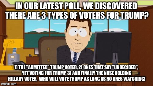 "Going Down Hillary! | IN OUR LATEST POLL, WE DISCOVERED THERE ARE 3 TYPES OF VOTERS FOR TRUMP? 1) THE ""ADMITTED"" TRUMP VOTER, 2) ONES THAT SAY ""UNDECIDED"", YET VO 