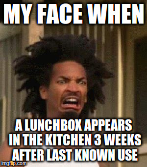 Disgusted Face | MY FACE WHEN A LUNCHBOX APPEARS IN THE KITCHEN 3 WEEKS AFTER LAST KNOWN USE | image tagged in disgusted face | made w/ Imgflip meme maker