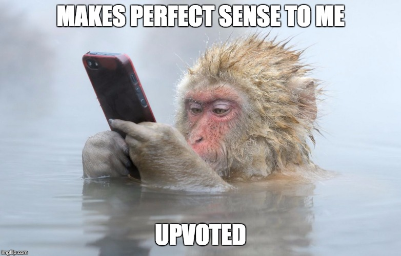 monkey in a hot tub with iphone | MAKES PERFECT SENSE TO ME UPVOTED | image tagged in monkey in a hot tub with iphone | made w/ Imgflip meme maker