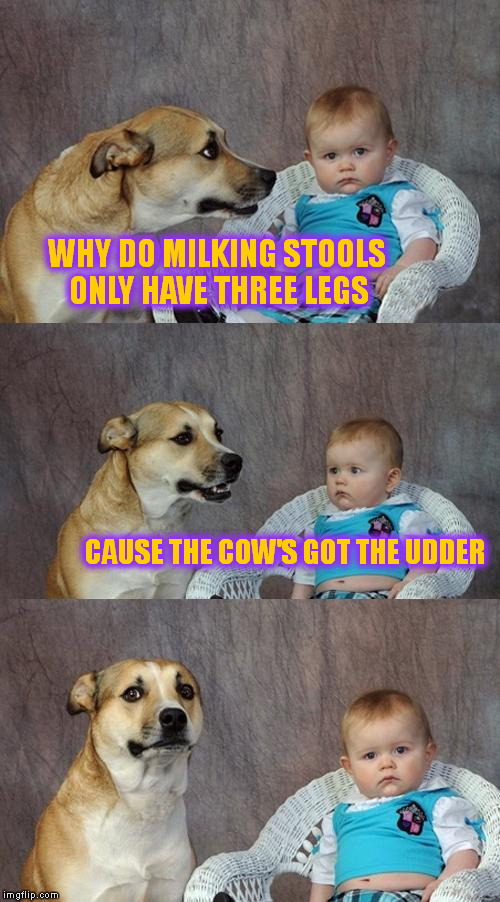 Dad Joke Dog Meme | WHY DO MILKING STOOLS ONLY HAVE THREE LEGS CAUSE THE COW'S GOT THE UDDER | image tagged in memes,dad joke dog | made w/ Imgflip meme maker