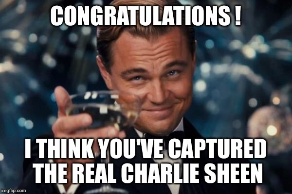 Leonardo Dicaprio Cheers Meme | CONGRATULATIONS ! I THINK YOU'VE CAPTURED THE REAL CHARLIE SHEEN | image tagged in memes,leonardo dicaprio cheers | made w/ Imgflip meme maker