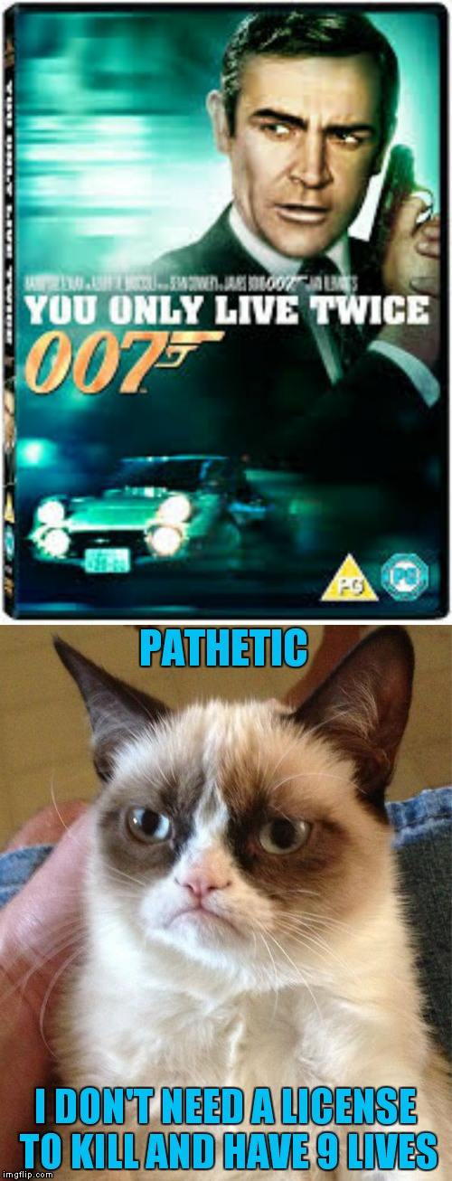 Grumpy is not impressed by Mr. Bond! | PATHETIC I DON'T NEED A LICENSE TO KILL AND HAVE 9 LIVES | image tagged in 007,grumpy cat,not impressed | made w/ Imgflip meme maker