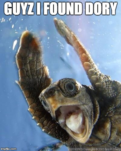 Happy Turtle |  GUYZ I FOUND DORY | image tagged in happy turtle | made w/ Imgflip meme maker