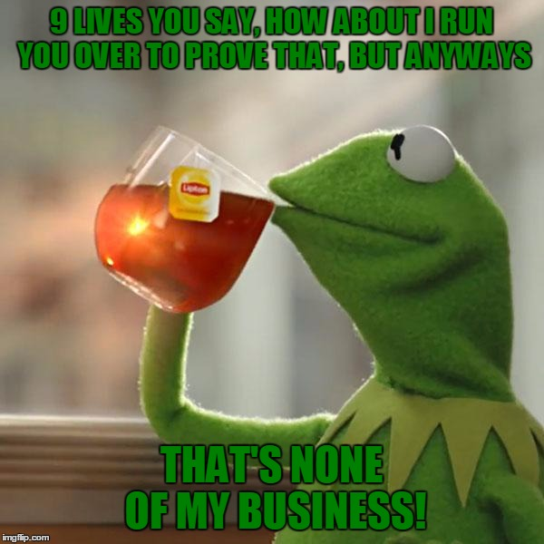 But Thats None Of My Business Meme | 9 LIVES YOU SAY, HOW ABOUT I RUN YOU OVER TO PROVE THAT, BUT ANYWAYS THAT'S NONE OF MY BUSINESS! | image tagged in memes,but thats none of my business,kermit the frog | made w/ Imgflip meme maker