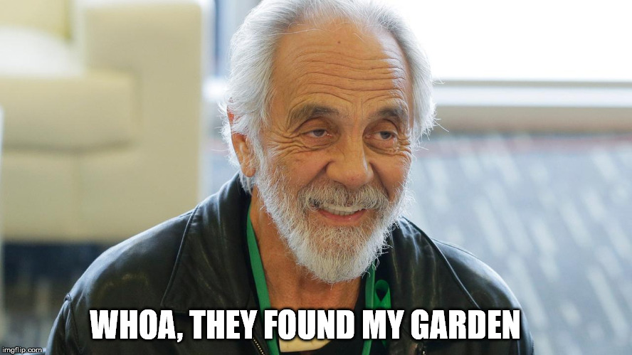 WHOA, THEY FOUND MY GARDEN | made w/ Imgflip meme maker