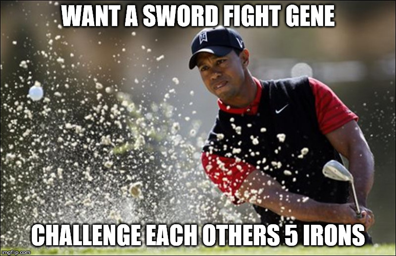 WANT A SWORD FIGHT GENE CHALLENGE EACH OTHERS 5 IRONS | made w/ Imgflip meme maker