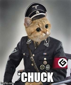 Grammar Cat  | *CHUCK | image tagged in grammar cat | made w/ Imgflip meme maker