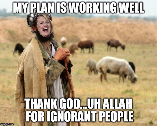 Hillary Sheep Herder | MY PLAN IS WORKING WELL THANK GOD...UH ALLAH FOR IGNORANT PEOPLE | image tagged in hillary sheep herder | made w/ Imgflip meme maker