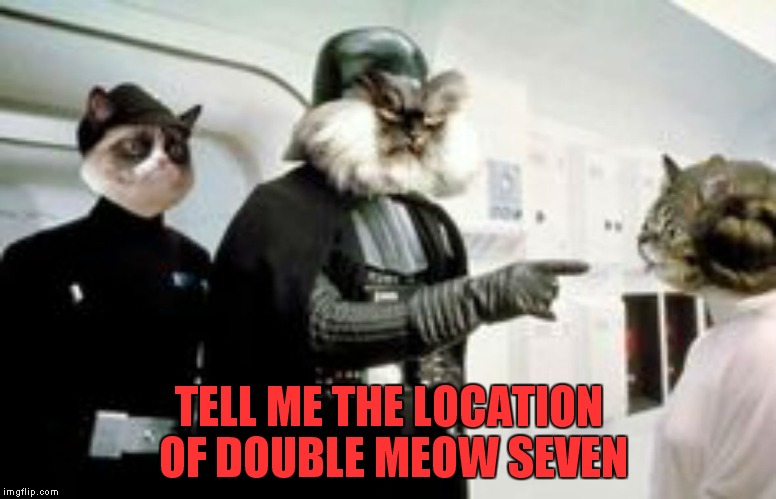 TELL ME THE LOCATION OF DOUBLE MEOW SEVEN | made w/ Imgflip meme maker