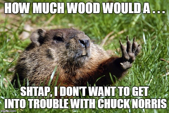 Woodchuck Nope | HOW MUCH WOOD WOULD A . . . SHTAP, I DON'T WANT TO GET INTO TROUBLE WITH CHUCK NORRIS | image tagged in woodchuck nope | made w/ Imgflip meme maker