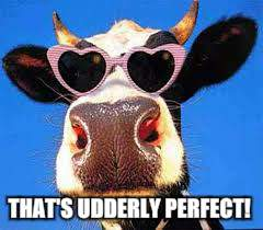 THAT'S UDDERLY PERFECT! | made w/ Imgflip meme maker