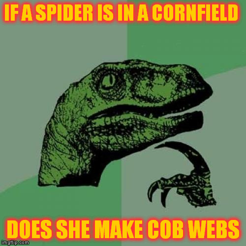 Philosoraptor Meme | IF A SPIDER IS IN A CORNFIELD DOES SHE MAKE COB WEBS | image tagged in memes,philosoraptor | made w/ Imgflip meme maker
