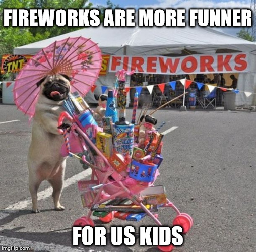 FIREWORKS ARE MORE FUNNER FOR US KIDS | made w/ Imgflip meme maker
