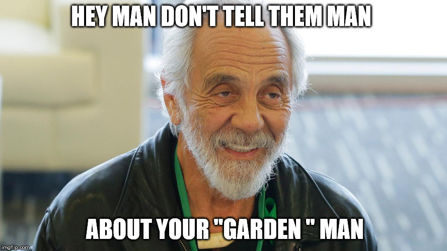 "HEY MAN DON'T TELL THEM MAN ABOUT YOUR ""GARDEN "" MAN 