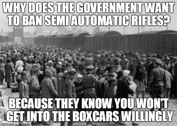 gun controls | WHY DOES THE GOVERNMENT WANT TO BAN SEMI AUTOMATIC RIFLES? BECAUSE THEY KNOW YOU WON'T GET INTO THE BOXCARS WILLINGLY | image tagged in gun control | made w/ Imgflip meme maker