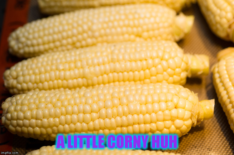 A LITTLE CORNY HUH | made w/ Imgflip meme maker