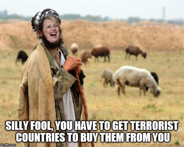Hillary Sheep Herder | SILLY FOOL, YOU HAVE TO GET TERRORIST COUNTRIES TO BUY THEM FROM YOU | image tagged in hillary sheep herder | made w/ Imgflip meme maker