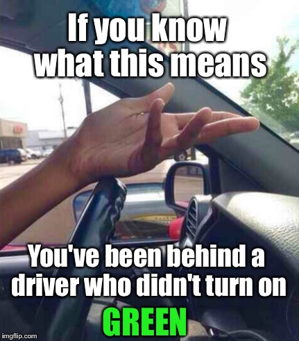 WTF Driver | If you know what this means You've been behind a driver who didn't turn on GREEN | image tagged in wtf driver,memes,traffic,driving,bad driver meme | made w/ Imgflip meme maker
