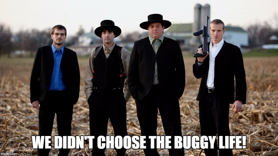 WE DIDN'T CHOOSE THE BUGGY LIFE! | made w/ Imgflip meme maker