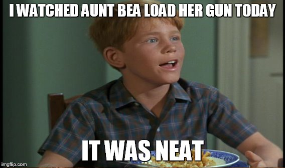 I WATCHED AUNT BEA LOAD HER GUN TODAY IT WAS NEAT | made w/ Imgflip meme maker