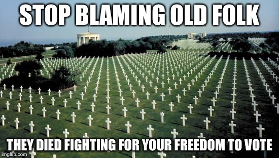 American graveyards in Normandy | STOP BLAMING OLD FOLK THEY DIED FIGHTING FOR YOUR FREEDOM TO VOTE | image tagged in american graveyards in normandy | made w/ Imgflip meme maker