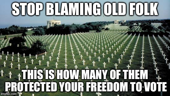 American graveyards in Normandy | STOP BLAMING OLD FOLK THIS IS HOW MANY OF THEM PROTECTED YOUR FREEDOM TO VOTE | image tagged in american graveyards in normandy | made w/ Imgflip meme maker