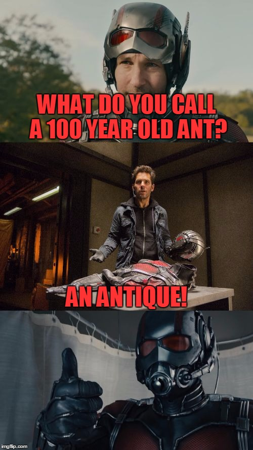 Bad Pun Ant-Man |  WHAT DO YOU CALL A 100 YEAR OLD ANT? AN ANTIQUE! | image tagged in bad pun ant-man,funny,memes,bad pun,ant-man,marvel | made w/ Imgflip meme maker